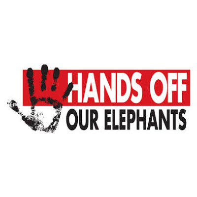 Hand Off Our Elephants Logo
